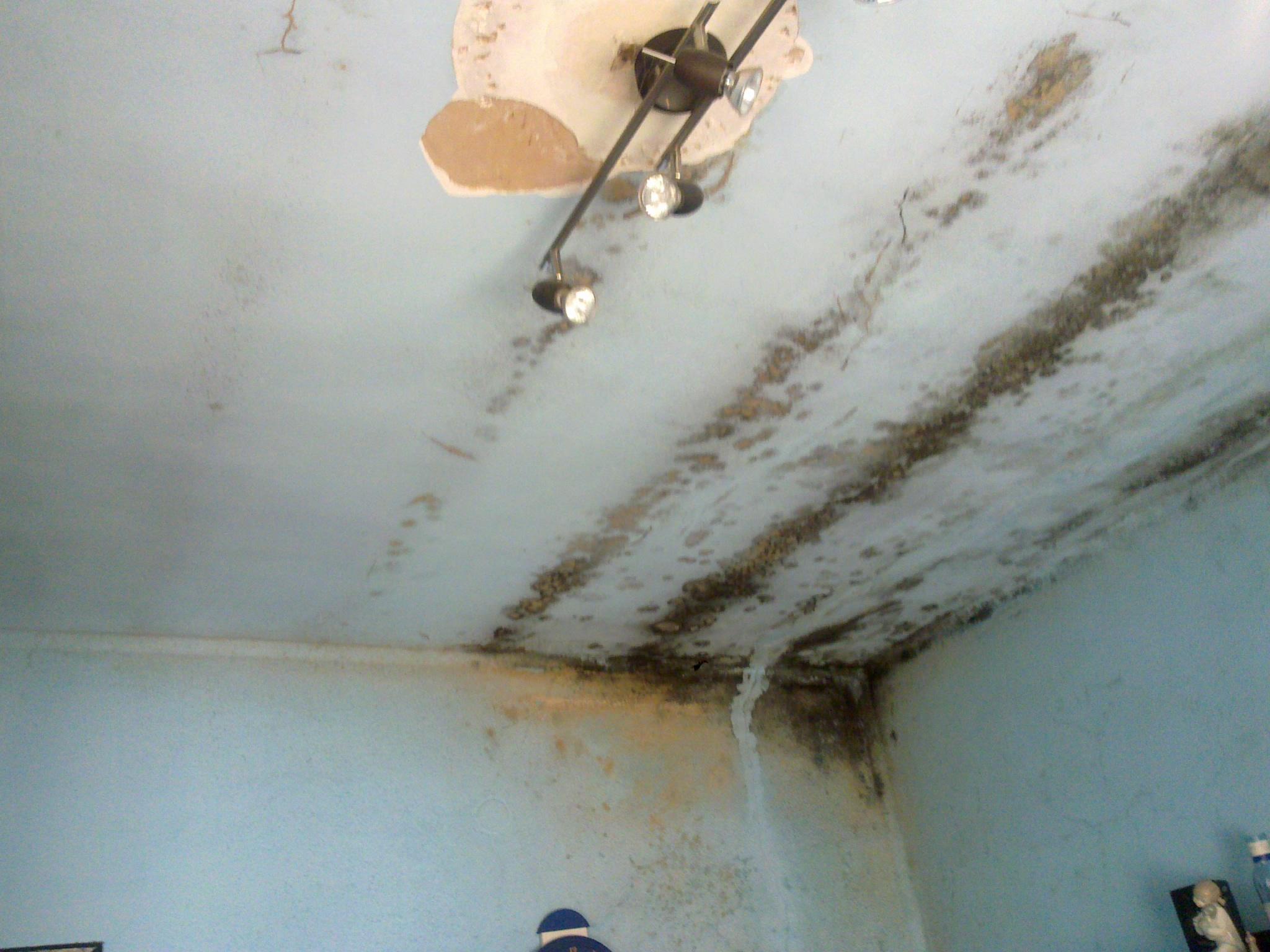 Eliminar humedad por condensacion secamax - Eliminar humedad por condensacion ...
