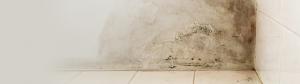 humedad en pared con suelo
